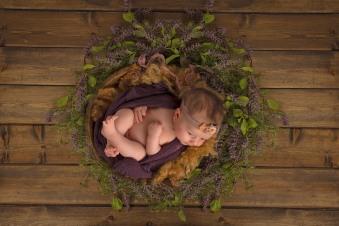nelson_newborn-28