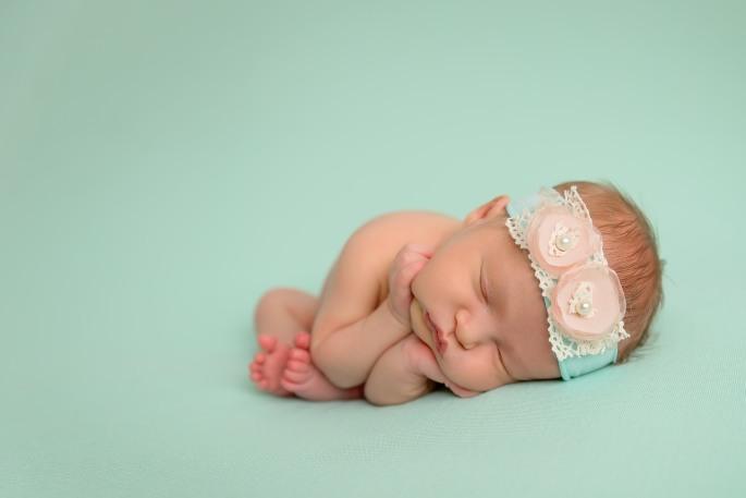 pittaway_newborn-02
