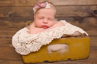 pittaway_newborn-36