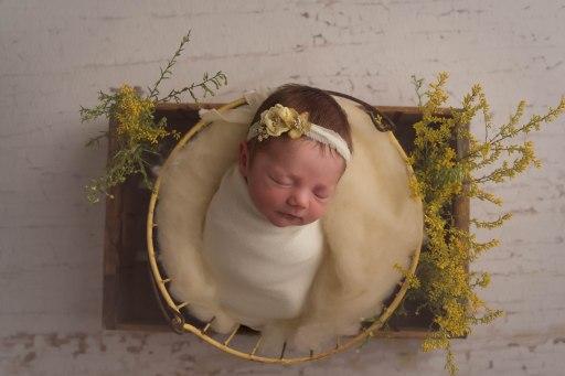 Johnson_newborn-23
